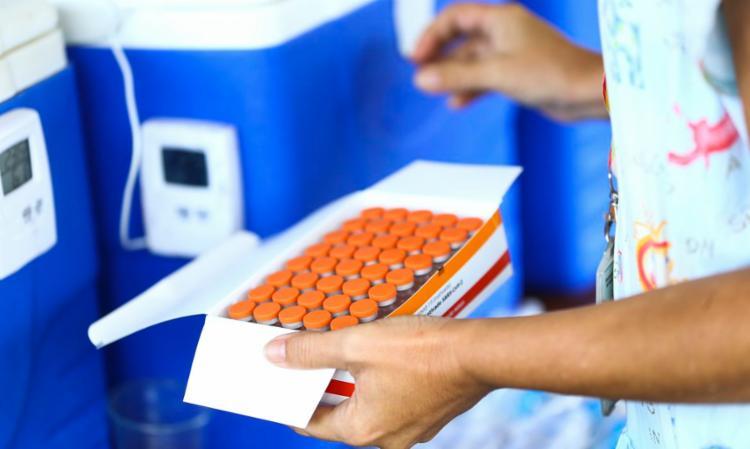 PL permite que empresas privadas comprem imunizantes para doar ao SUS | Foto: Marcelo Camargo | Agência Brasil - Foto: Marcelo Camargo | Agência Brasil