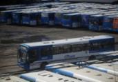 Após paralisação, ônibus da CSN voltam a circular | Raphael Muller / AG. A TARDE