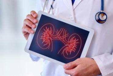 Diagnósticos de câncer de rim, próstata e bexiga caem 26% na pandemia | Divulgação | Shutterstock