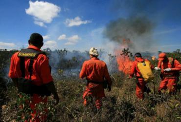 Incêndios na Chapada exigem investigação | Alberto Coutinho | Agecom
