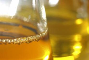 Seminário debate biocombustíveis | Divulgação