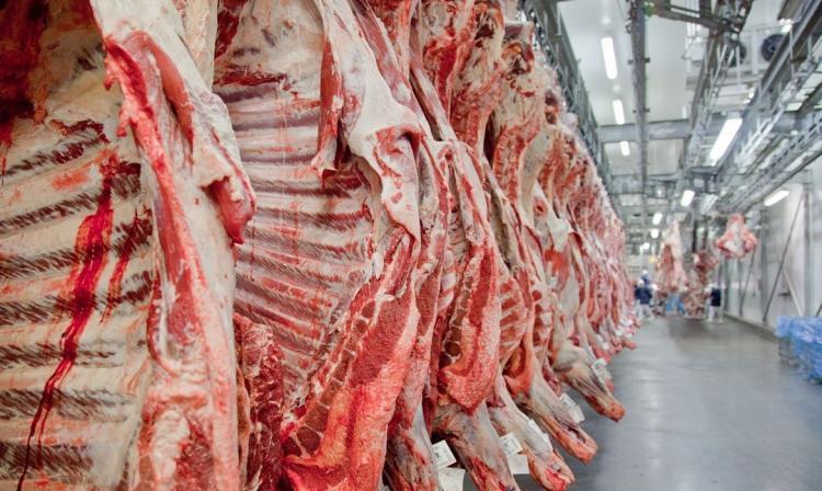 Uma das explicações para a alta de preço é a menor disponibilidade de gado para o abate   Foto: Divulgação   Abiec - Foto: Divulgação   Abiec