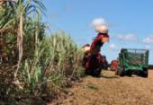 Governo lança plano de promoção da agricultura de baixo carbono | Foto: Arquivo | Agência Brasil