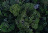 Inpe cria plataforma gratuita de dados do solo brasileiro | Foto: Divulgação | TV Brasil