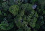 Inpe cria plataforma gratuita de dados do solo | Divulgação | TV Brasil