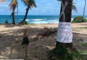 Protesto contra supressão de restinga em Stella Maris   Cidadão Repórter   via Whatsapp