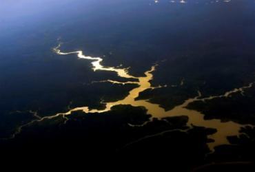 EUA saúda compromisso do Brasil sobre desmatamento, mas pede 'ações imediatas' | Valter Campanato | Agência Brasil