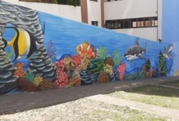 Loteamento Aquarius ganha espaço decorado com grafite | Reprodução | Redes Sociais