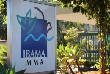 Mais de 400 servidores do Ibama denunciam paralisação de atividades | Reprodução