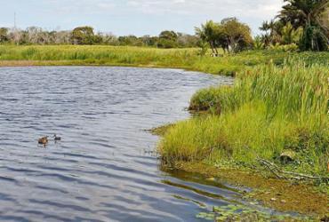 Área da lagoa de Guarajuba em risco | Shirley Stolze | Ag. A TARDE | 20.4.2021