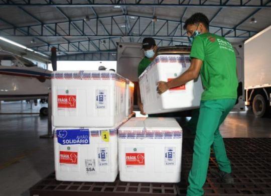 Bahia recebe mais de 220 mil doses da vacina contra a Covid-19   Divulgação   Sesab