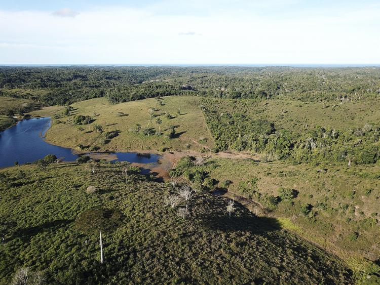 Fazenda com 122 ha por R$ 2,5 milhões, em Ilhéus | Foto: Divulgação