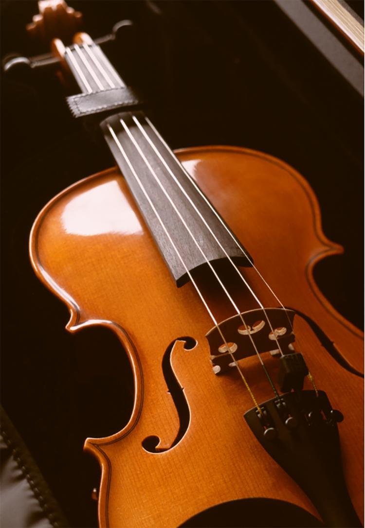 Dentre os violinos, o que leva o selo Stradivarius têm fama de qualidade incomparável - Foto: Canva/Divulgação