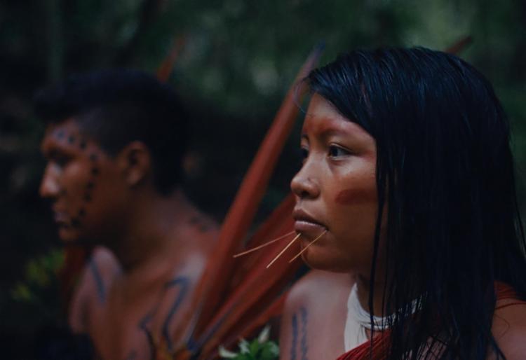 A última Floresta (2020): filme de encerramento é obra-denúncia de Luiz Bolognesi (de Ex-Pajé) - Foto: Divulgação