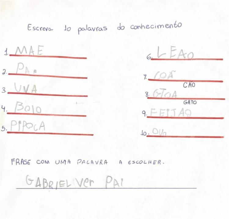 Atividade realizada pelo aluno para identificação da fase que o discente se encontra segundo Brochado (2006) - FONTE: ALUN@ 3 | Foto: Divulgação