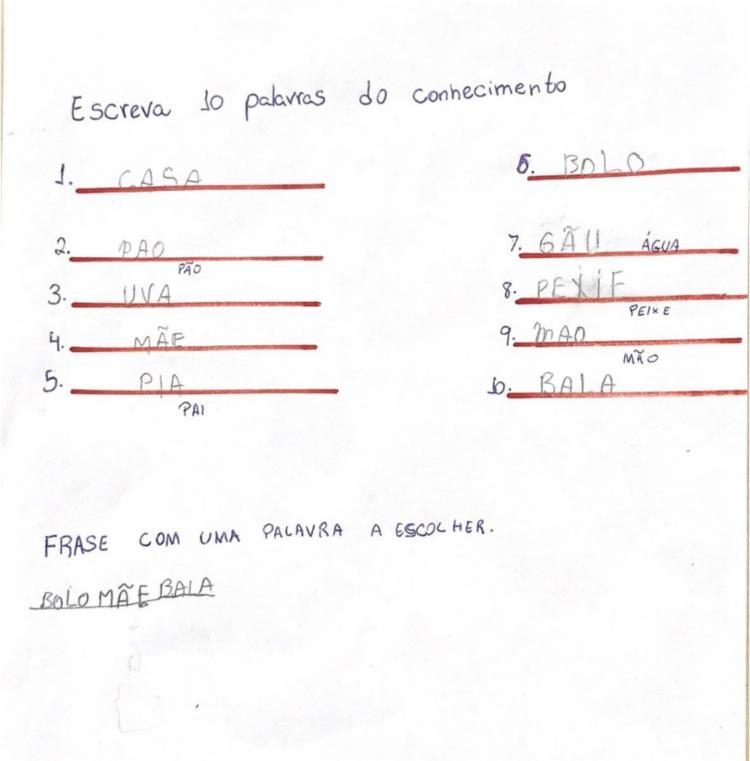 Atividade realizada pelo aluno para identificação da fase que o discente se encontra segundo Brochado (2006) - FONTE: ALUN@ 4 | Foto: Divulgação