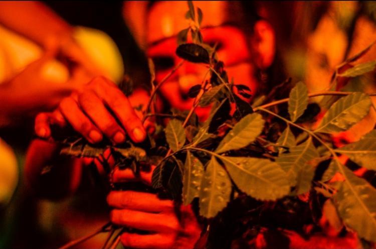 Ação integra o projeto Areté - Tempo de Festa | Foto: Divulgação - Foto: Divulgação