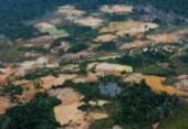 Cinco feridos em conflito armado entre garimpeiros ilegais e yanomamis brasileiros | Foto: ISA | HAY