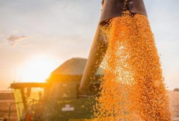 Exportações baianas cresceram 55,5% no mês de abril, aponta SEI | Aiba | Divulgação