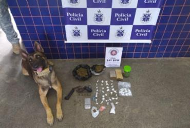 Nove homens são presos por suspeita de traficar drogas no recôncavo baiano