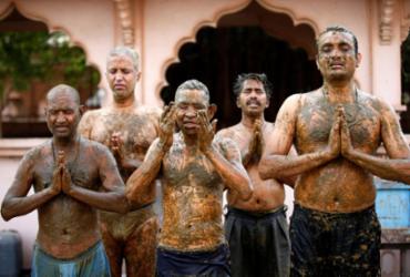 Médicos da Índia pedem para que pessoas do país não usem esterco bovino contra a Covid-19 | Reprodução