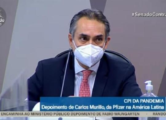 Acompanhe o depoimento de Carlos Murillo, gerente da Pfizer, à CPI da Covid   Reprodução   TV Senado