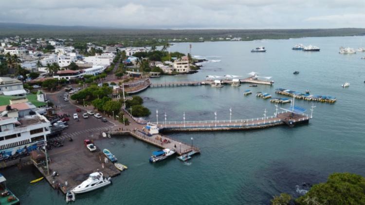 Ilha leva o nome do naturalista inglês Charles Darwin, que usou o arquipélago como um laboratório natural para desenvolver sua teoria - Foto: AFP