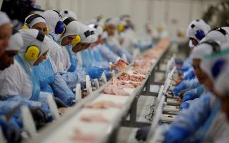 O aumento no preço da Carne de boi está estimado em cerca de 17,6% enquanto os preços do frango devem sofrer alta entre 10 e 15% na no fim do mês de julho - Foto: Arquivo | Agência Brasil
