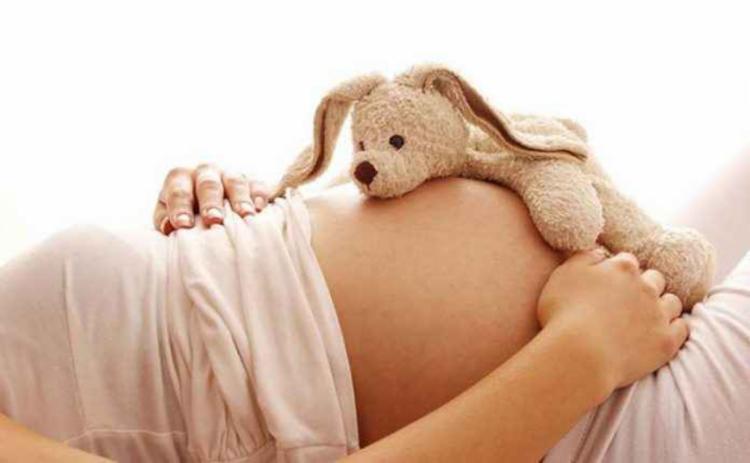 Dados na maternidade na Bahia são de um estudo levantado pela Superintendência de Estudos Econômicos e Sociais da Bahia (SEI) | Foto: Divulgação - Foto: Divulgação