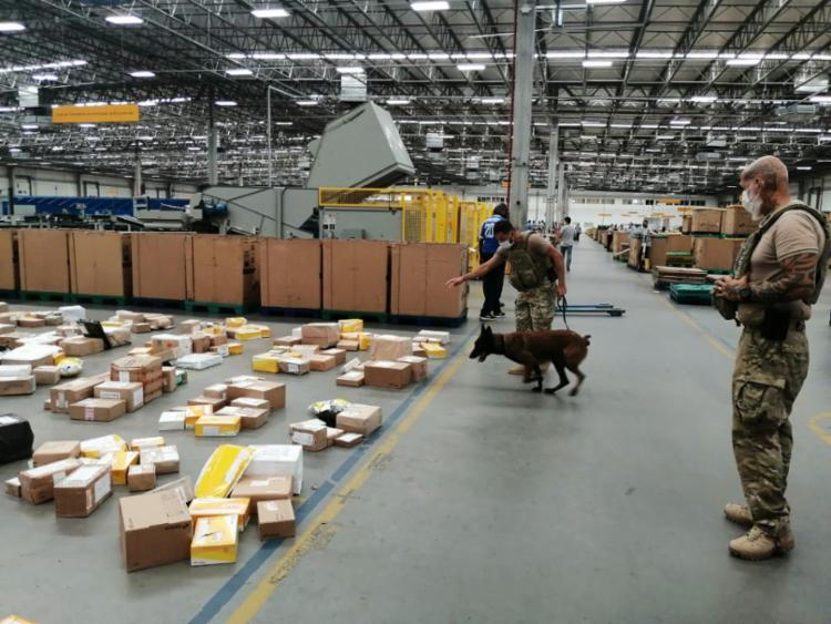 A apreensão foi realizada com o auxílio dos cães farejadores da Coordenação de Operações Especiais (COE)