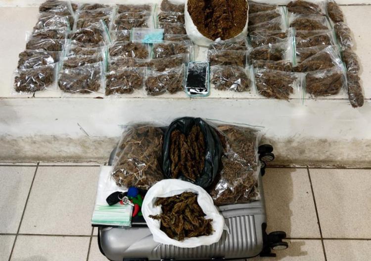 Ações da polícia resultaram na apreensão de diversas porções de drogas   Foto: Divulgação   SSP-BA - Foto: Divulgação   SSP-BA