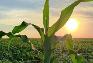 Congresso debate ecologia e agro | Reprodução | agron.com.br