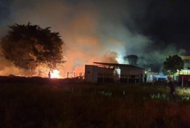 Incêndio atinge vegetação na BR-101, próximo à Teixeira de Freitas