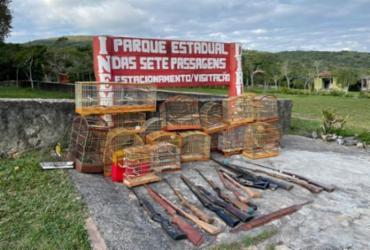 Polícia resgata 74 pássaros mantidos em cativeiro no Centro-norte da Bahia