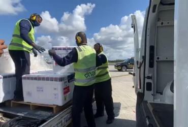Bahia recebe 143 mil doses da CoronaVac nesta sexta | Divulgação | Sesab