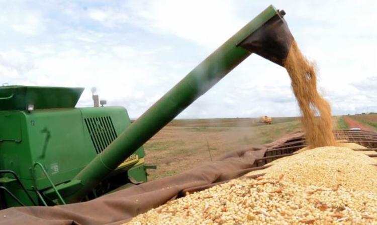O agronegócio teve um crescimento de 5,7%, porque o mundo está em um novo superciclo de commoditie - Foto: Divulgação   Agência Brasil