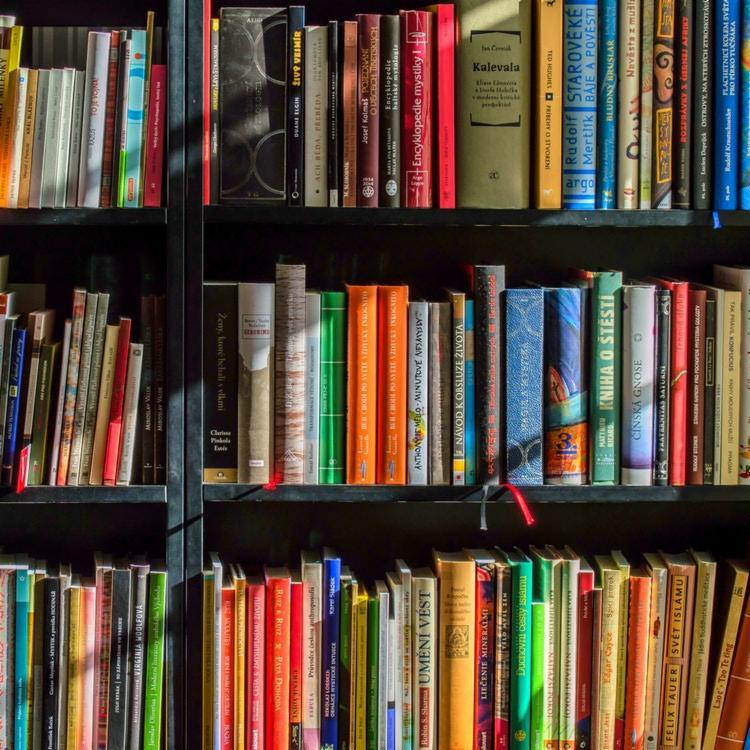 Dados são da pesquisa TIC Cultura 2020 | Foto: Divulgação | Pexels - Foto: Divulgação | Pexels