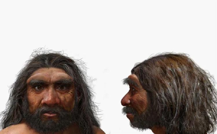 O crânio foi datado em 146 mil anos e recebeu o nome de Homo longi ou homem dragão   Foto: Arquivo   AFP - Foto: Arquivo   AFP