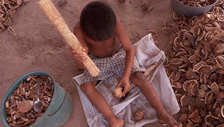 A estatística (de acidentes no trabalho infantil) alcança a dimensão do inaceitável retorno aos ancestrais maus tratos | Foto: Ascom | MPT-BA - Foto: Ascom | MPT-BA