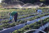 Dia do Agricultor tem ações de divulgação | Foto: Valter Campanato | Agência Brasil | 24.8.2017