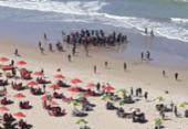 Novo ataque de tubarão é registrado em praia de Pernambuco | Foto: Divulgação