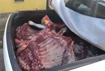Quatro são presos por venda de carne clandestina em Porto Seguro