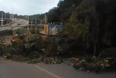 Galhos de árvores caem e obstruem parcialmente a Ladeira da Cruz da Redenção | Reprodução