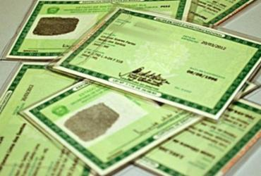 SAC tem quase 108 mil documentos esperando para serem retirados pela população |