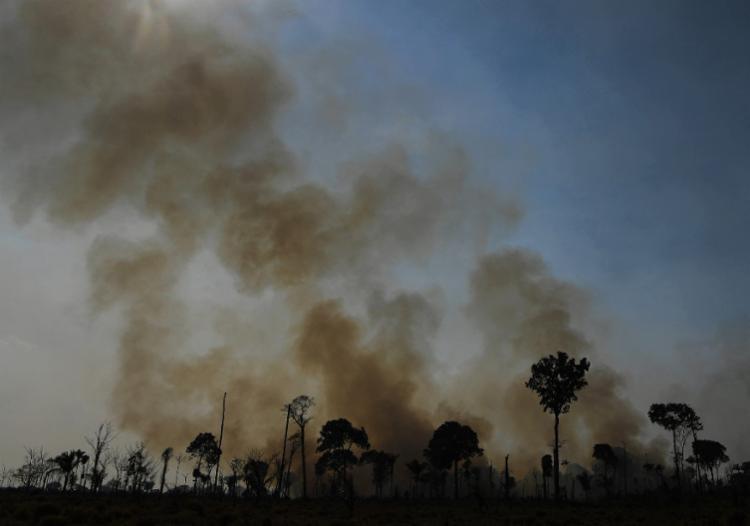 Mostrou que reconhecer os direitos dos povos indígenas ao seu território pode ser uma força poderosa contra a crise climática | Foto: Carl De Souza | AFP - Foto: Carl De Souza | AFP