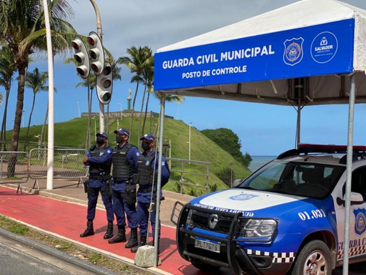 Ações duraram ao longo de um ano | Foto: Divulgação | GCM - Foto: Divulgação | GCM