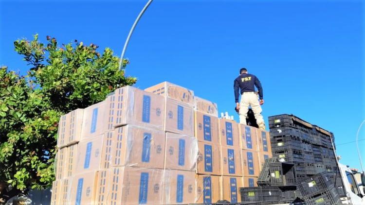 Apreensões causaram um impacto financeiro de R$ 2,6 milhões ao crime organizado | Foto: Divulgação | PRF - Foto: Divulgação | PRF
