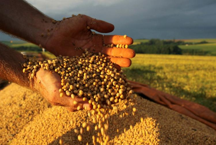 Alcançar 500 milhões de toneladas de grãos é um desafio   Foto: Jonas Oliveira   ANPr - Foto: Jonas Oliveira   ANPr