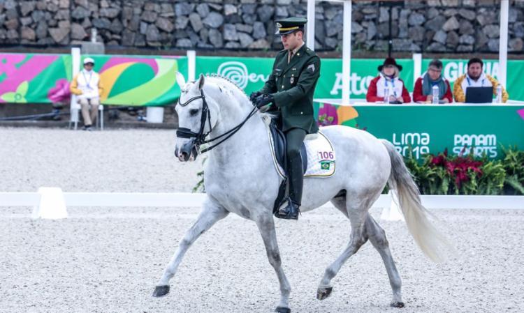 Atleta do hipismo adestramento chegou nesta quinta-feira   Foto: Pedro Ramos   rededoesporte.gov.br - Foto: Pedro Ramos   rededoesporte.gov.br