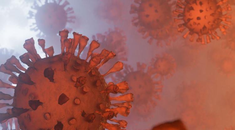 Variante Epsilon pode impactar, de forma negativa, capacidade de ligação dos anticorpos, o que dificulta a neutralização do agente infeccioso | Foto: Reprodução | IciakPhotos | Envato - Foto: Reprodução | IciakPhotos | Envato